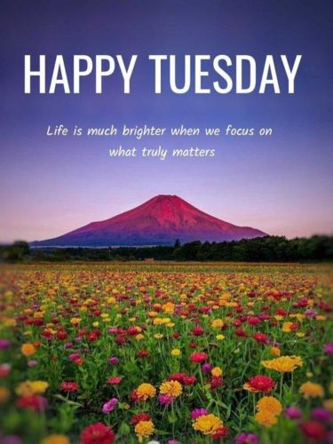 Tuesday Good Morning Wishes quotes images