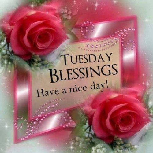 Tuesday Good Morning Wishes blessing images
