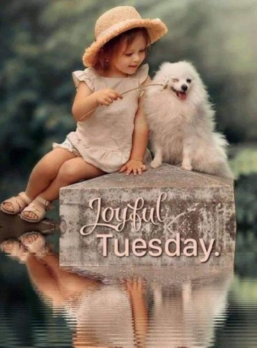 Happy Tuesday Good Morning Wishes images for status