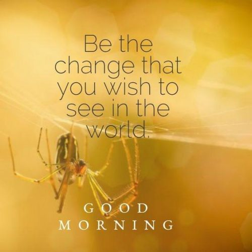 Best Good morning images with Inspirational Quotes