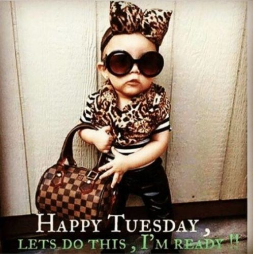 Happy Tuesday Good Morning images