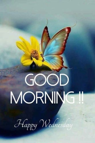 Good Morning wishes images for status