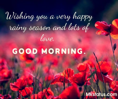 Beautiful Rainy Good Morning Messages images
