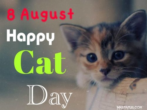Happy Cat Day 2020 images