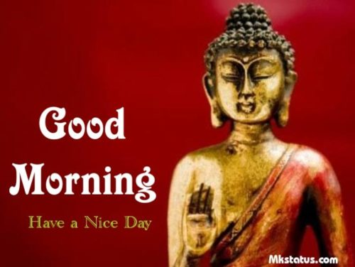 Download Good Morning Buddha Wishes Images