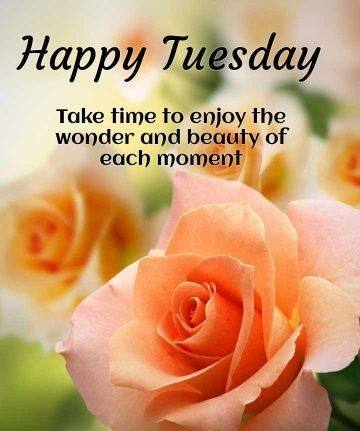 Best Tuesday Good Morning Wishes pictures