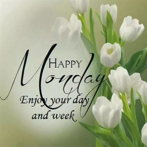 Monday Good Morning wishes Quotes photos