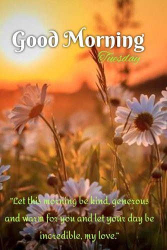 Download Good Morning Tuesday Quotes pictures