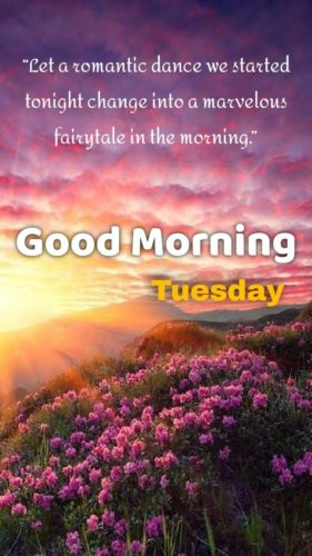 Quotes for wishing Good Morning Tuesday images