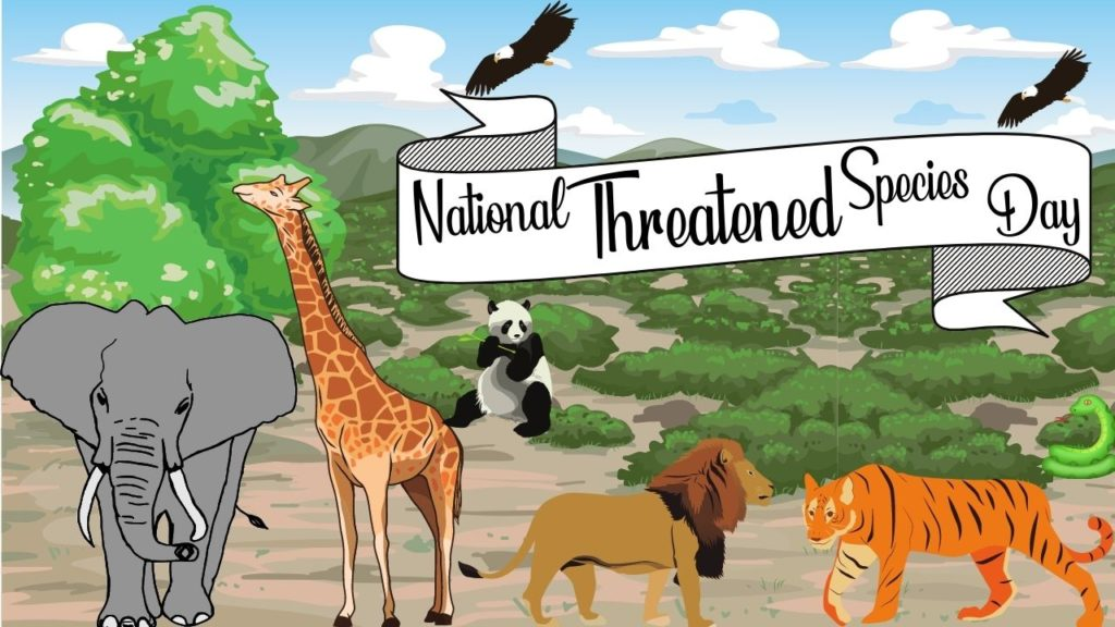 National Threatened Species Day HD Images
