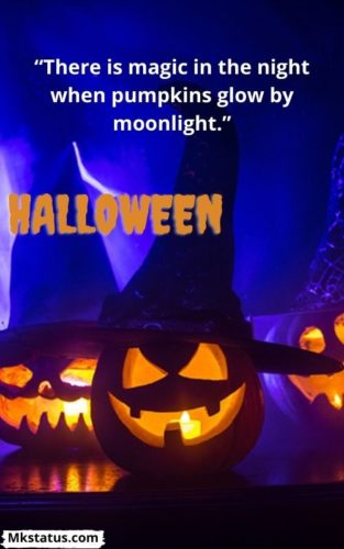 Best Halloween quotes images for Whats-app