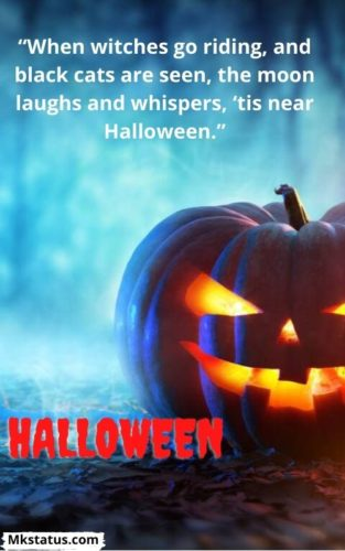 Halloween quotes images for status