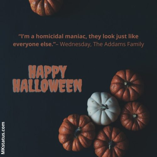 Download Halloween Sayings for status