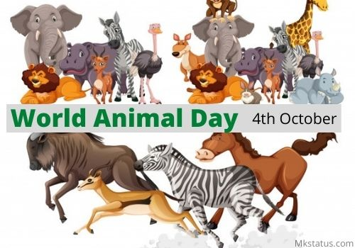 Best World Animal Day 2020 images