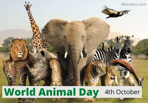 World Animal Day 2020 images for status