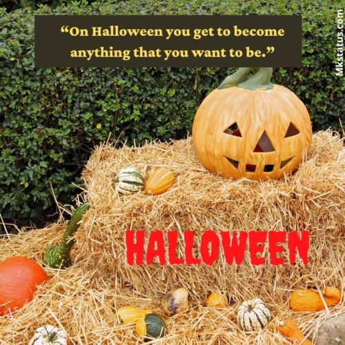 Short Halloween Quotes for status