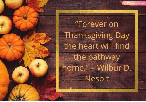 Happy Thanksgiving quotes images