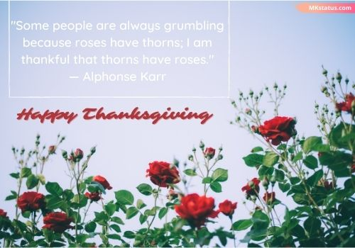 Happy Thanksgiving Quotes in English