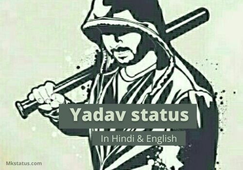 Yadav status in Hindi & English