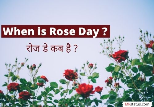 When is Rose Day