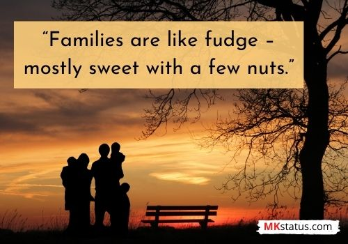Family Quotes funny