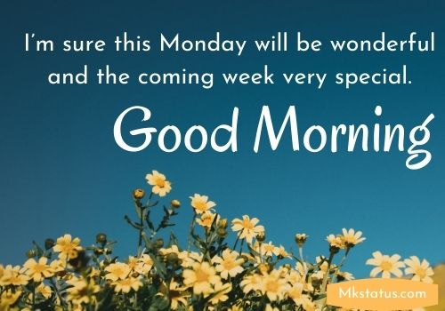Monday Blessings for the week
